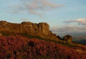 Cow and Calf Rocks